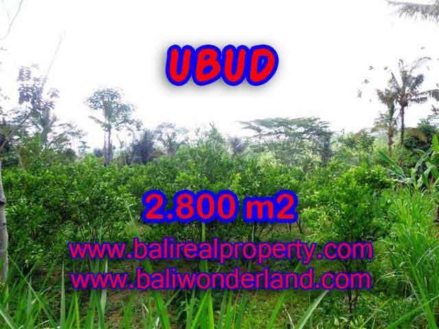 Land in Ubud Bali for sale, nice view in Ubud Tegalalang Bali – TJUB375