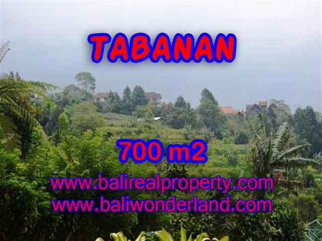 Magnificent Property in Bali for sale, land in Tabanan Bali for sale – TJTB103