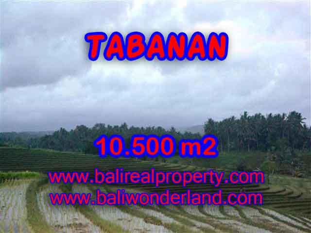 Property sale in Bali, Beautiful land in Tabanan for sale – TJTB095
