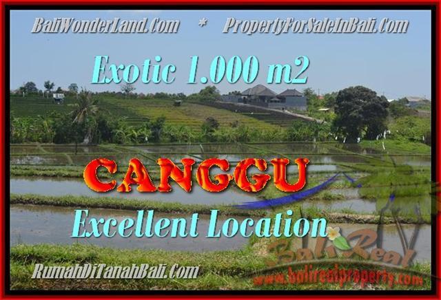 FOR SALE Magnificent 1.000 m2 LAND IN Canggu Kayutulang BALI TJCG168
