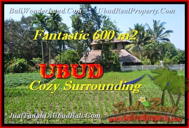 Beautiful LAND SALE IN UBUD BALI TJUB452