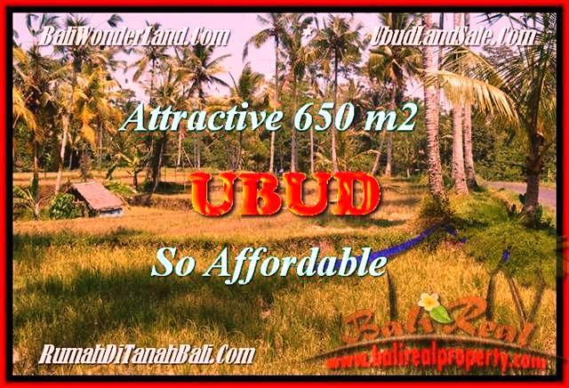 Affordable LAND FOR SALE IN UBUD BALI TJUB455