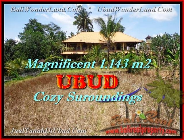 Beautiful 1143 m2 LAND IN Sentral Ubud BALI FOR SALE TJUB460
