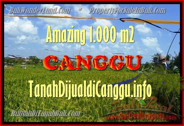Magnificent PROPERTY 1.000 m2 LAND SALE IN CANGGU TJCG154