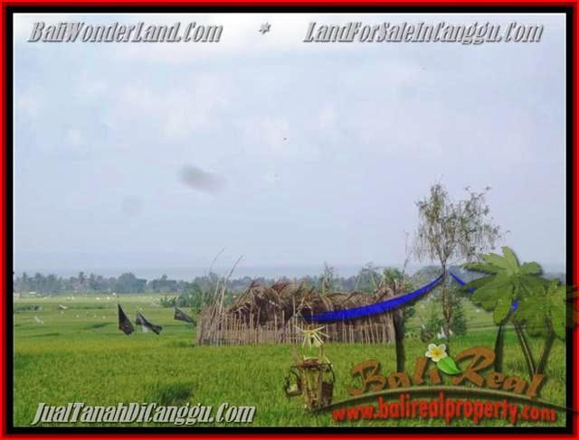 FOR SALE Exotic PROPERTY LAND IN Canggu Cemagi TJCG158