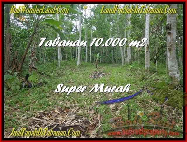 Affordable 10.000 m2 LAND SALE IN TABANAN TJTB177