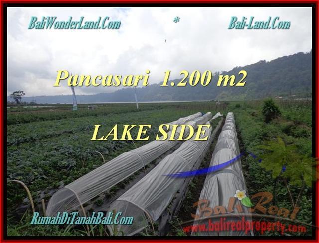 Beautiful PROPERTY LAND IN TABANAN FOR SALE TJTB178