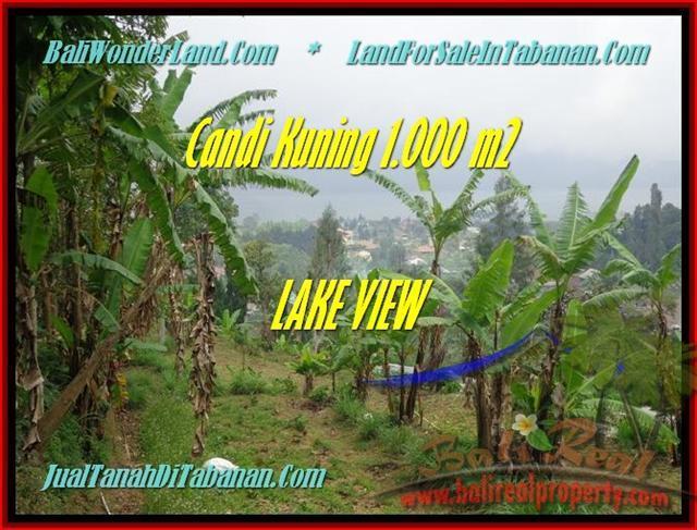 Affordable LAND FOR SALE IN Tabanan Bedugul BALI TJTB181
