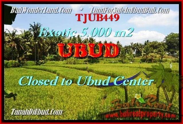 Exotic PROPERTY Sentral Ubud BALI LAND FOR SALE TJUB449