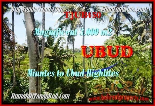 Exotic PROPERTY LAND SALE IN Sentral Ubud BALI TJUB450