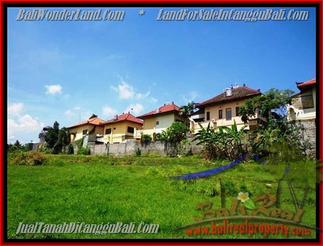 FOR SALE Exotic PROPERTY LAND IN Canggu Pererenan TJCG147