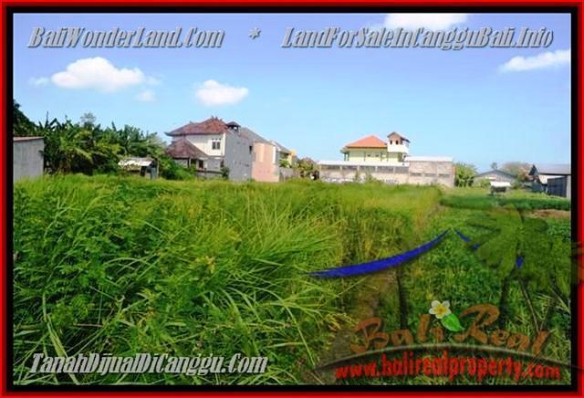 Exotic PROPERTY LAND FOR SALE IN Canggu Kerobokan BALI TJCG148