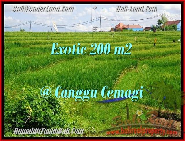 Magnificent PROPERTY 200 m2 LAND SALE IN CANGGU TJCG170