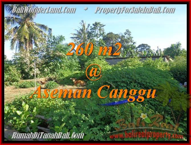 Beautiful LAND SALE IN Canggu Brawa TJCG174