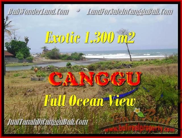 Affordable PROPERTY LAND SALE IN Canggu Pererenan TJCG162