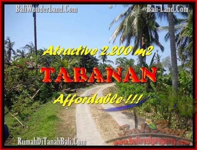 Exotic PROPERTY LAND FOR SALE IN TABANAN TJTB169