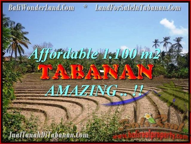 Beautiful PROPERTY TABANAN LAND FOR SALE TJTB170
