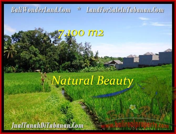 FOR SALE Beautiful LAND IN Tabanan Tanah Lot BALI TJTB197