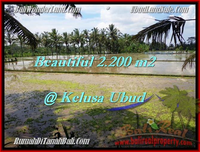 Beautiful 2,200 m2 LAND FOR SALE IN UBUD BALI TJUB475