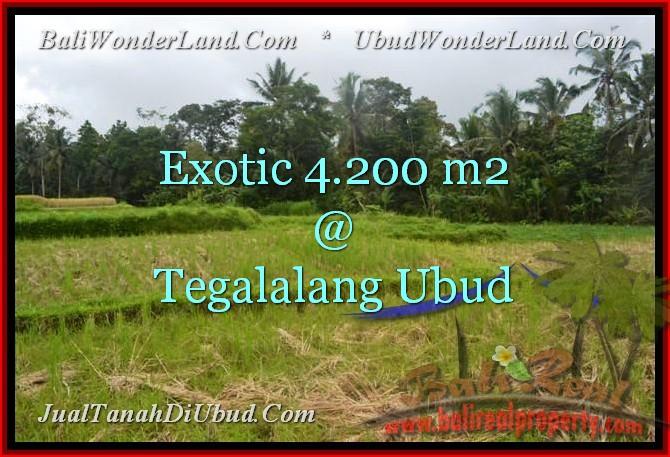 Affordable UBUD 4,200 m2 LAND FOR SALE TJUB461