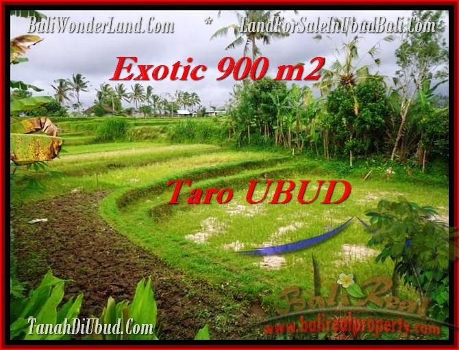 FOR SALE Affordable LAND IN Ubud Tegalalang TJUB464