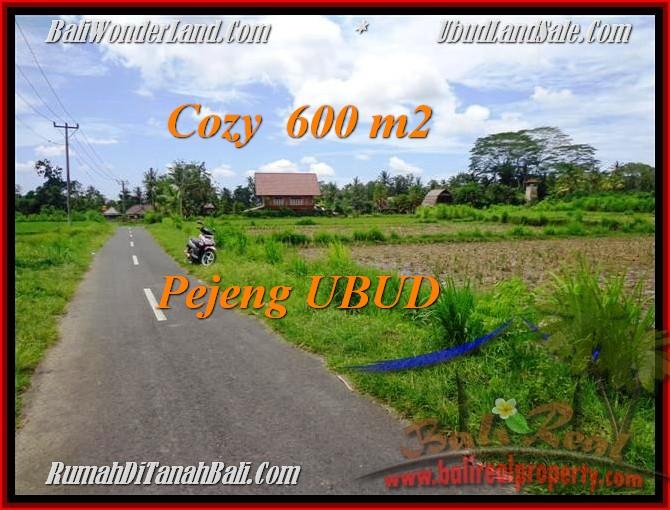 Exotic LAND FOR SALE IN Ubud Pejeng BALI TJUB465