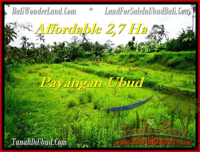 Beautiful 27,000 m2 LAND FOR SALE IN UBUD BALI TJUB469