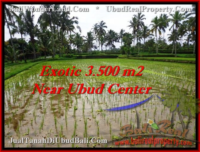 FOR SALE Magnificent 3,500 m2 LAND IN UBUD TJUB477