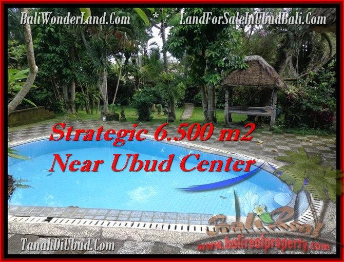 Magnificent PROPERTY LAND FOR SALE IN UBUD TJUB479