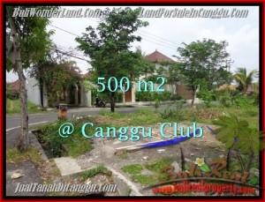 Magnificent PROPERTY LAND IN Canggu Brawa BALI FOR SALE TJCG176