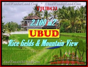 Exotic PROPERTY 2,100 m2 LAND SALE IN UBUD BALI TJUB423