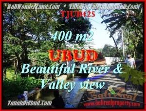 Beautiful 400 m2 LAND IN UBUD BALI FOR SALE TJUB425