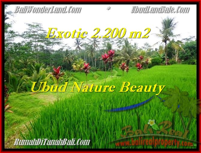 Beautiful PROPERTY LAND IN UBUD FOR SALE TJUB480