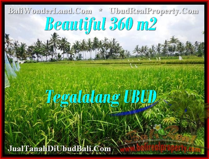 FOR SALE Beautiful LAND IN Ubud Tegalalang BALI TJUB482