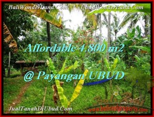 LAND IN Ubud Payangan BALI FOR SALE TJUB486