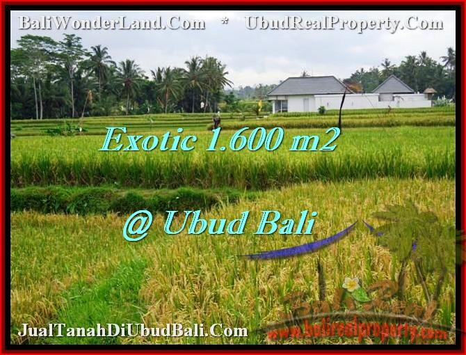 Magnificent 1,600 m2 LAND IN UBUD BALI FOR SALE TJUB487