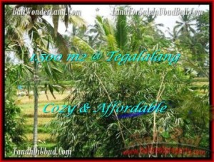 Magnificent 1,500 m2 LAND IN UBUD BALI FOR SALE TJUB489