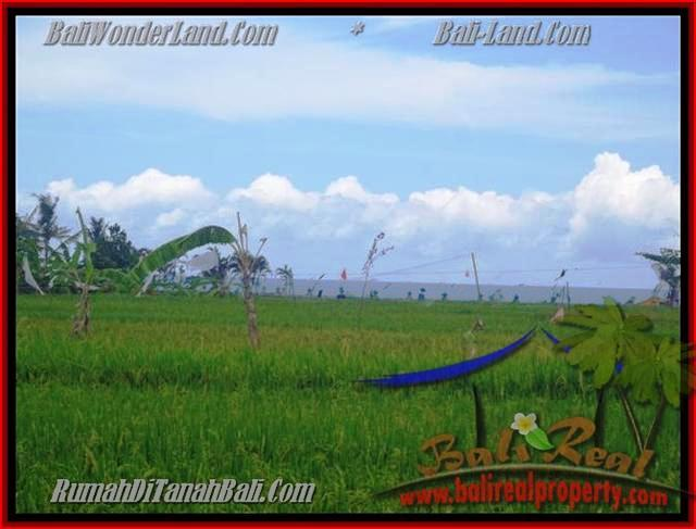 Magnificent LAND IN Canggu Cemagi BALI FOR SALE TJCG140