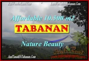 Beautiful PROPERTY LAND SALE IN TABANAN TJTB165