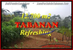 Affordable PROPERTY LAND FOR SALE IN TABANAN TJTB167