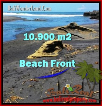 Exotic 10,900 m2 LAND FOR SALE IN TABANAN BALI TJTB199