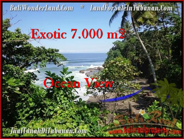 Exotic 7,000 m2 LAND FOR SALE IN TABANAN BALI TJTB200
