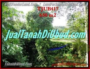LAND FOR SALE IN Sentral Ubud BALI TJUB417
