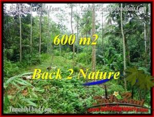 FOR SALE Exotic PROPERTY 600 m2 LAND IN UBUD BALI TJUB493