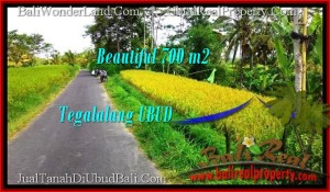 Affordable Ubud Tegalalang BALI LAND FOR SALE TJUB497