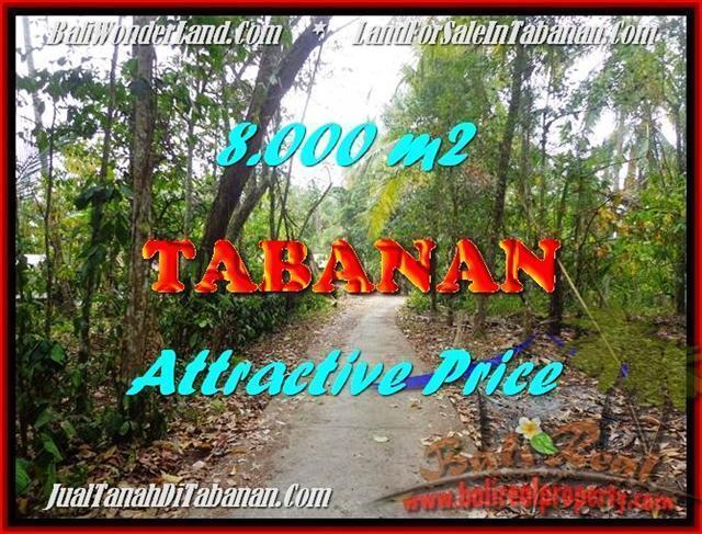 Affordable 8,000 m2 LAND FOR SALE IN TABANAN BALI TJTB161