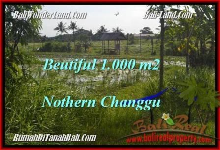 1,000 m2 LAND SALE IN Canggu Batu Bolong  BALI TJCG180