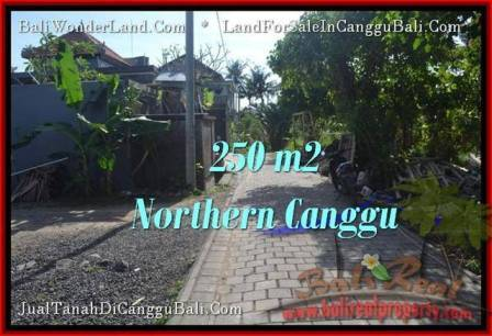 Exotic PROPERTY 250 m2 LAND SALE IN CANGGU TJCG182