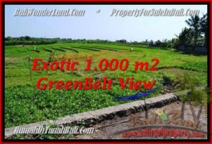 Exotic Canggu Pererenan LAND FOR SALE TJCG184