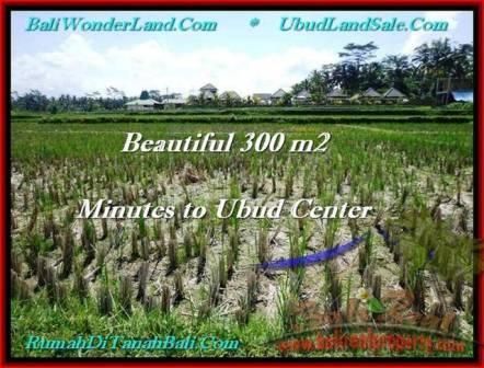 Affordable PROPERTY LAND FOR SALE IN UBUD TJUB500
